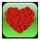 Valentine Day Coupon<br>情人节优惠卷
